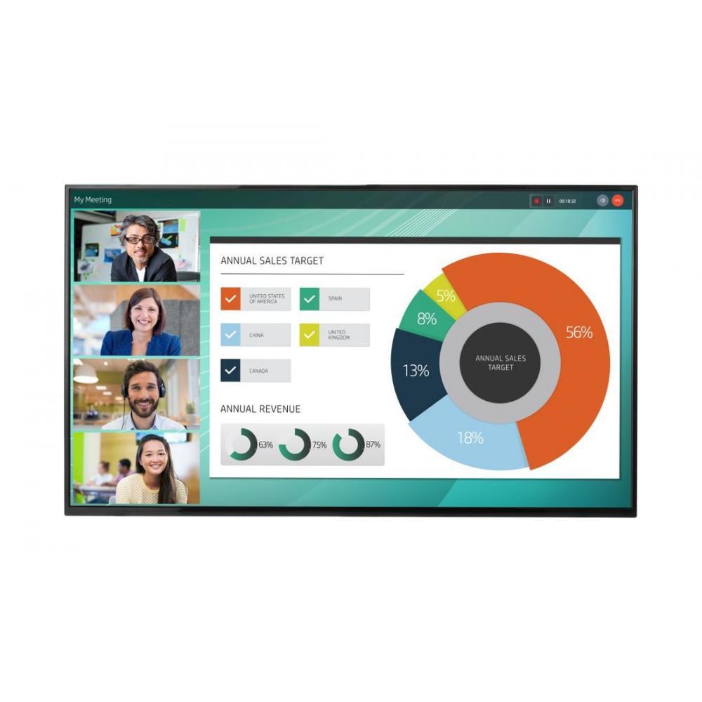 Monitor HP 55